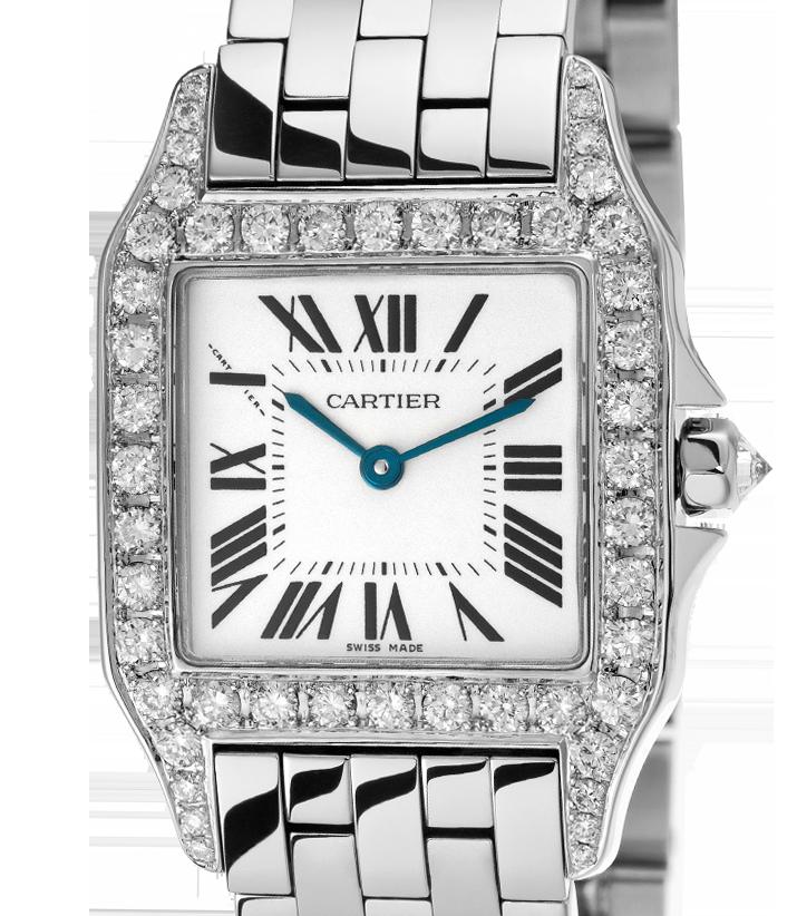 Cartier Demoiselle W25065Z5