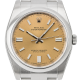 Rolex Oyster Perpetual 36mm Stainless Steel White Grape/Index 116000